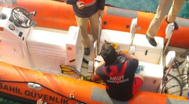 Denize düşen kedi AKUT'un operasyonuyla kurtarıldı