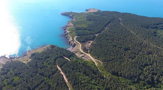 Sinop'ta nükleer santral kurulacak alan havadan görüntülendi