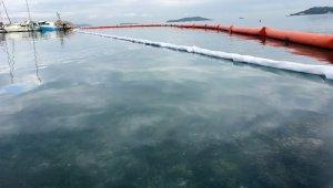 Yakıtla kaplanan Urla limanında temizleme çalışmaları sürüyor