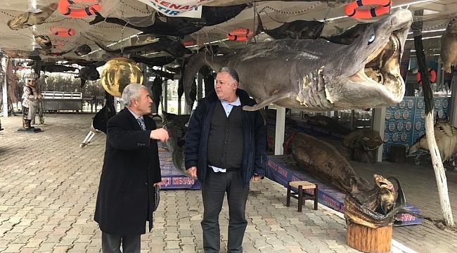 """Dr. Halil İbrahim Özkuş: """"Balıkçı Kenan Türkiye Deniz Canlıları Müzesi'ni üniversal hale getirmeliyiz"""""""