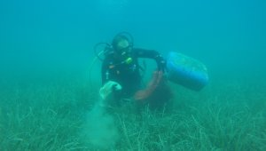 Deniz dibi temizlik çalışmaları Gölköy'de devam etti
