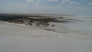 Tuz Gölü küçülüyor, flamingolar gelmiyor
