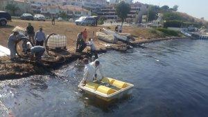 Foça'da meydana gelen ağır yakıt sızıntısı denizi kirletti