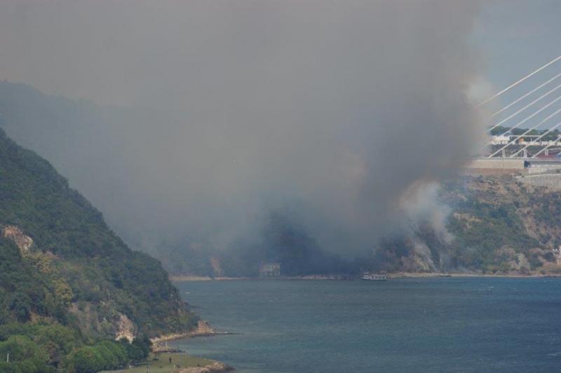 Büyükliman Bölgesinde Yangın