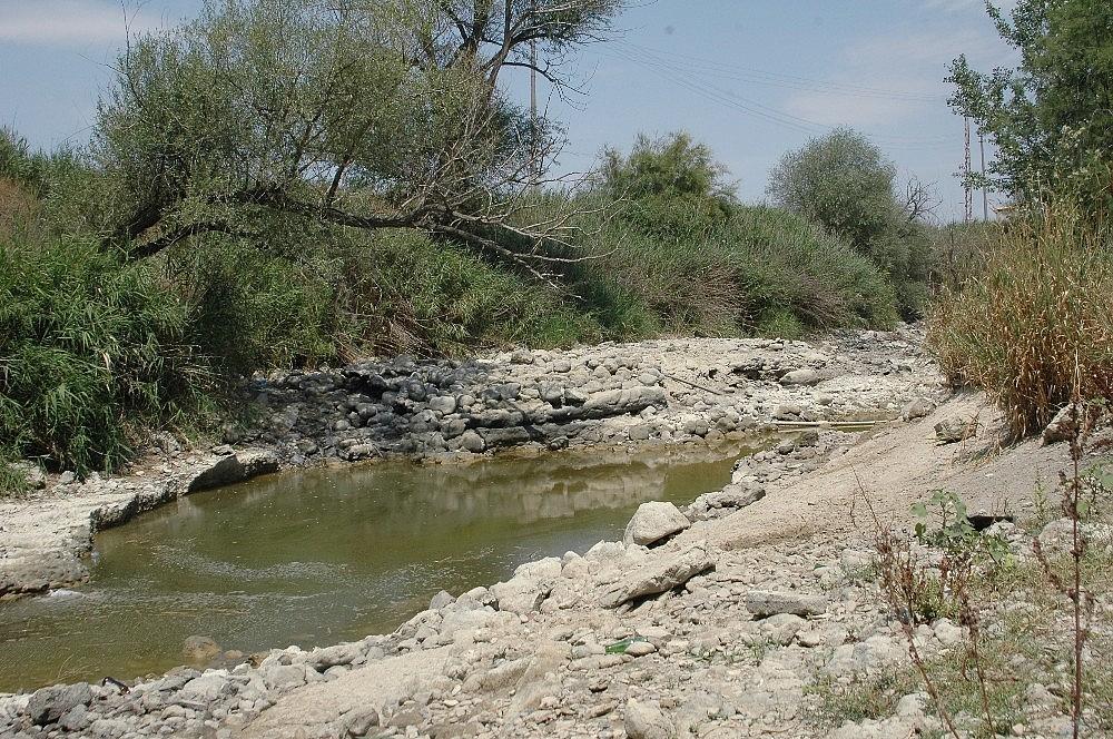 2018/07/turkiyenin-can-damari-sakarya-nehri-kurumaya-yuz-tuttu-20180727AW45-1.jpg