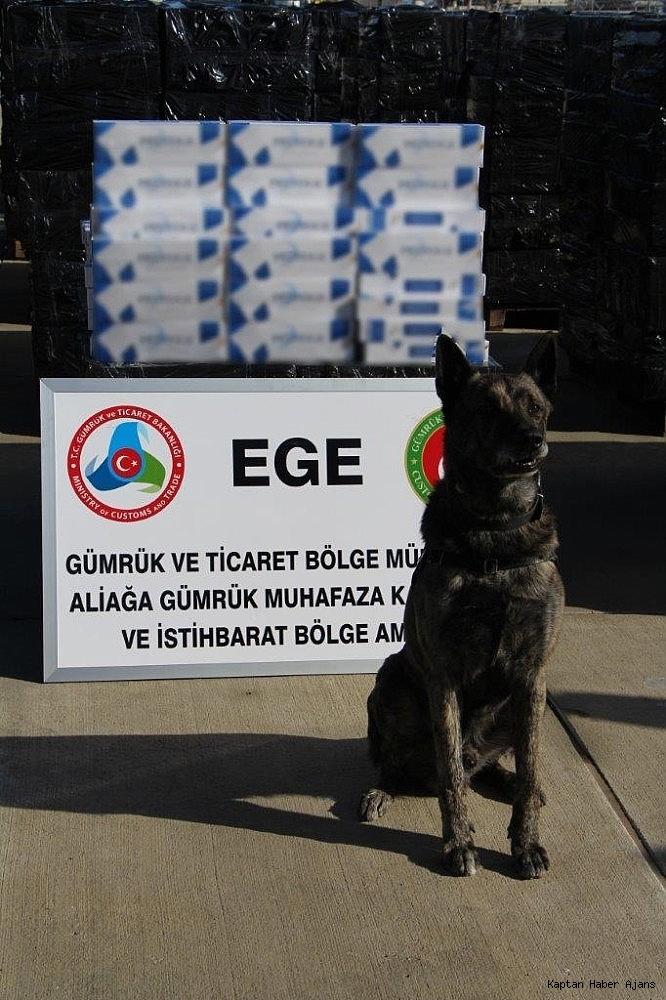 2019/02/izmir-aliaga-limaninda-500-bin-paket-kacak-sigara-ele-gecirildi-20190212AW62-4.jpg
