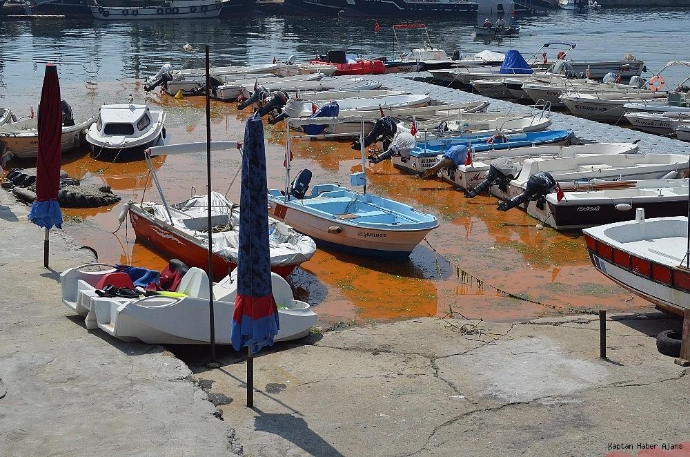 2019/04/marmara-denizindeki-turunculuk-buyuk-oranda-normale-dondu-20190429AW68-10.jpg