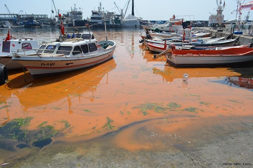 2019/04/marmara-denizindeki-turunculuk-buyuk-oranda-normale-dondu-20190429AW68-11.jpg