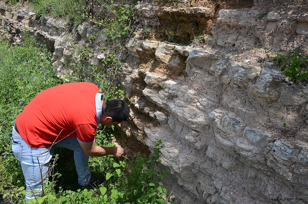 2019/05/zonguldakta-dinazor-cagi-deniz-canlilarina-ait-fosil-bulundu-20190530AW71-1.jpg