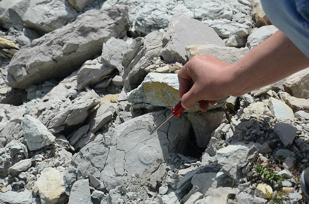 2019/05/zonguldakta-dinazor-cagi-deniz-canlilarina-ait-fosil-bulundu-20190530AW71-3.jpg