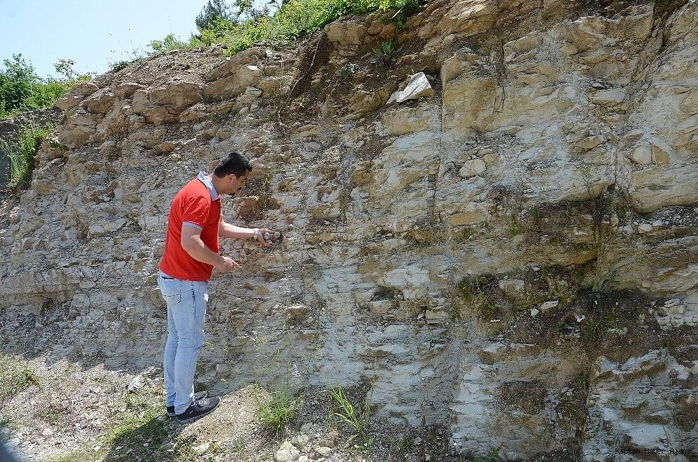 2019/05/zonguldakta-dinazor-cagi-deniz-canlilarina-ait-fosil-bulundu-20190530AW71-4.jpg
