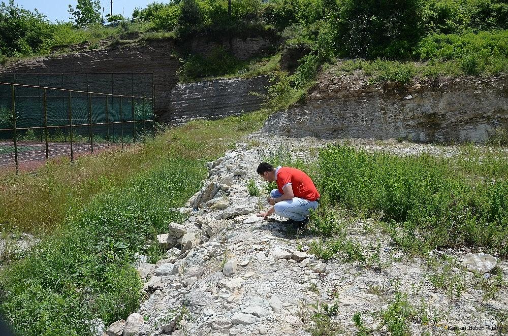 2019/05/zonguldakta-dinazor-cagi-deniz-canlilarina-ait-fosil-bulundu-20190530AW71-5.jpg