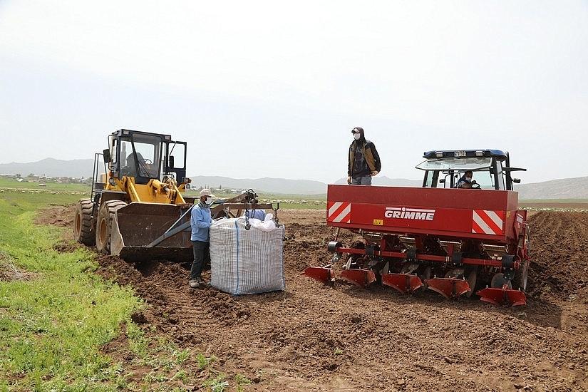2020/05/sivasta-mor-patatesin-ekimi-yapildi-20200521AW02-4.jpg