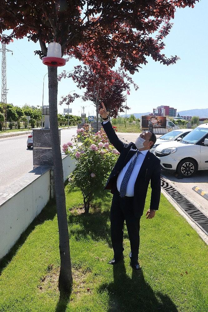 2020/06/turkiyede-kamu-binalari-arasinda-ilk-yesil-bina-sertifikasini-afyonkarahisar-ticaret-ve-sanayi-odasi-aldi-20200606AW03-5.jpg