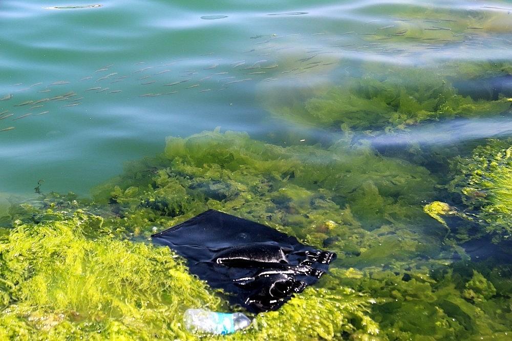 2021/03/her-yil-denizlere-8-milyon-tondan-fazla-plastik-atiliyor-20210319AW27-1.jpg