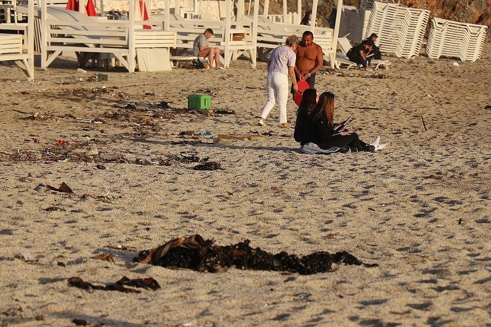 2021/03/sahilde-ayaklara-yapisan-zift-saskina-cevirdi-20210319AW27-2.jpg