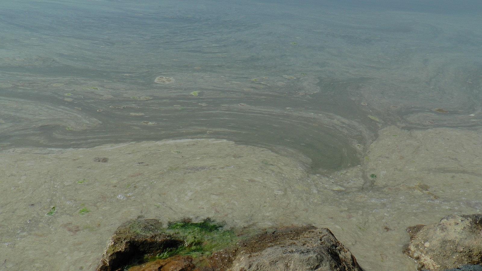 2021/05/deniz-salyasi-istilasi-pendik-sahillerine-kadar-geldi-20210430AW30-2.jpg