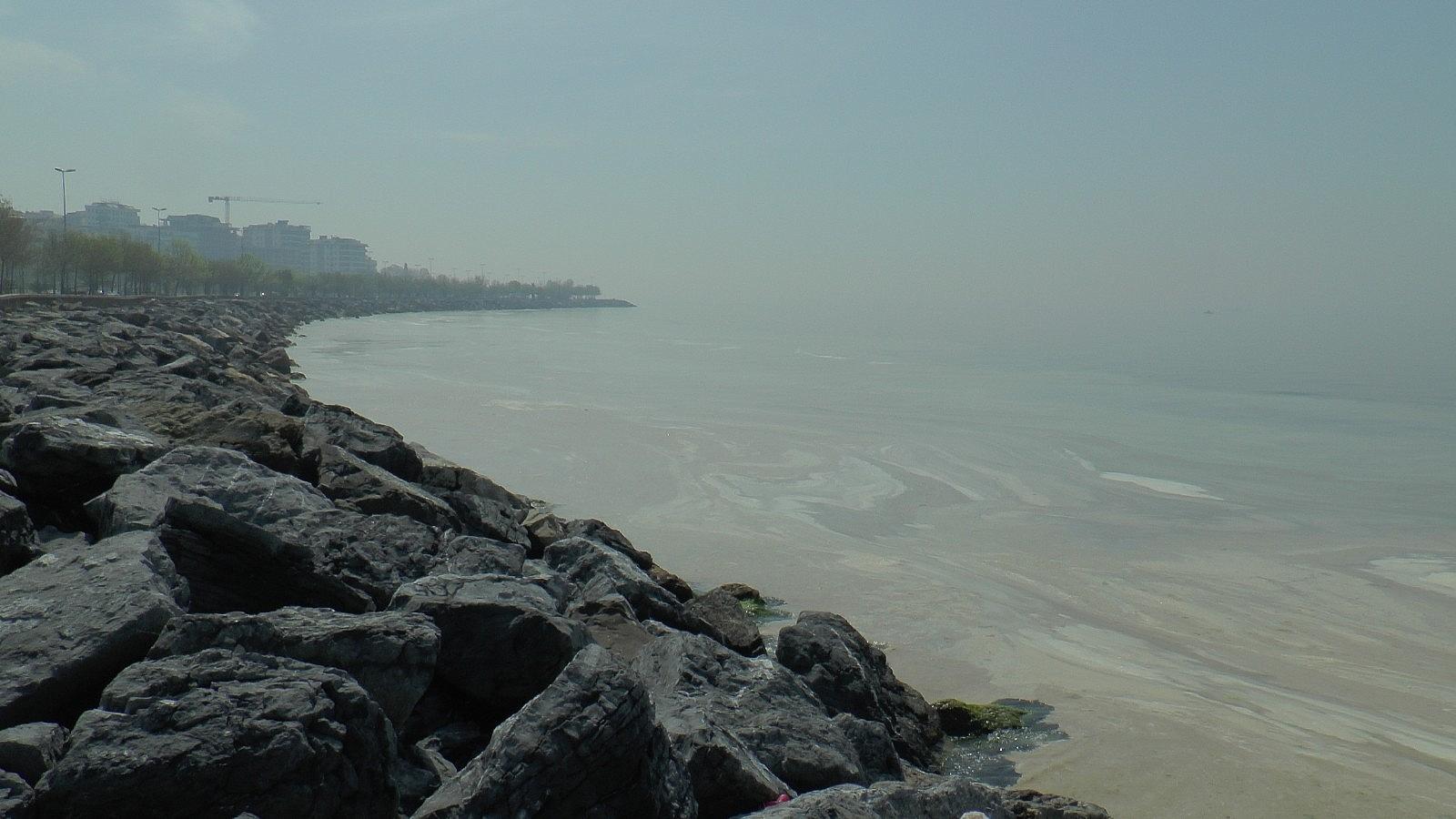 2021/05/deniz-salyasi-istilasi-pendik-sahillerine-kadar-geldi-20210430AW30-3.jpg