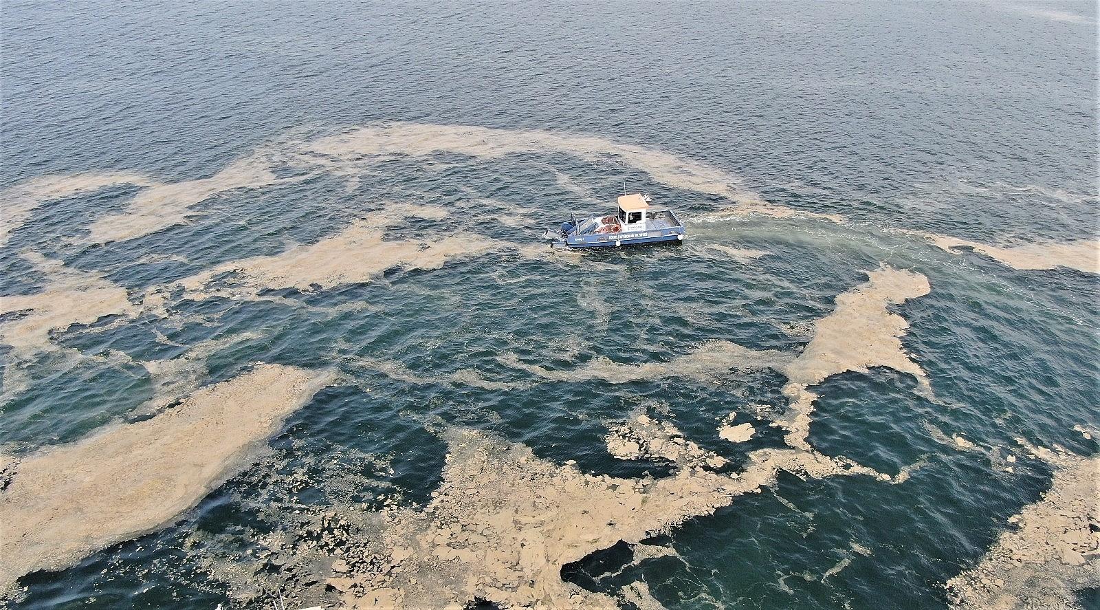 2021/05/deniz-salyasinin-istila-ettigi-izmit-korfezi-eski-haline-donuyor-20210510AW31-2.jpg