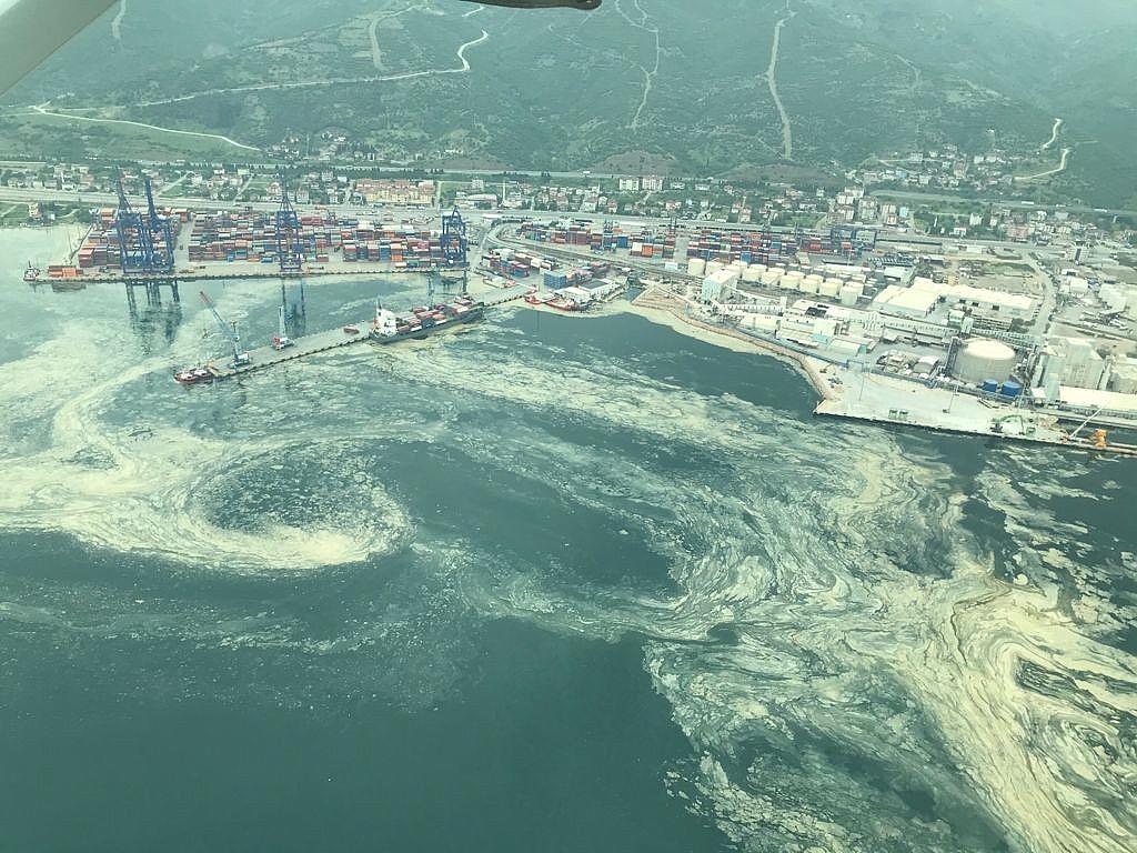 2021/05/deniz-salyasinin-istila-ettigi-izmit-korfezi-eski-haline-donuyor-20210510AW31-4.jpg