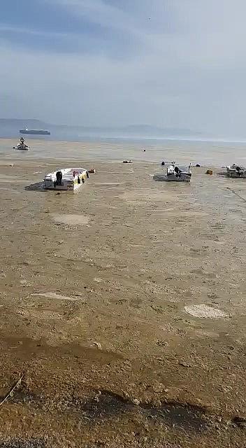 2021/05/gemlik-narli-sahilleri-beyaza-burundu-20210502AW31-3.jpg