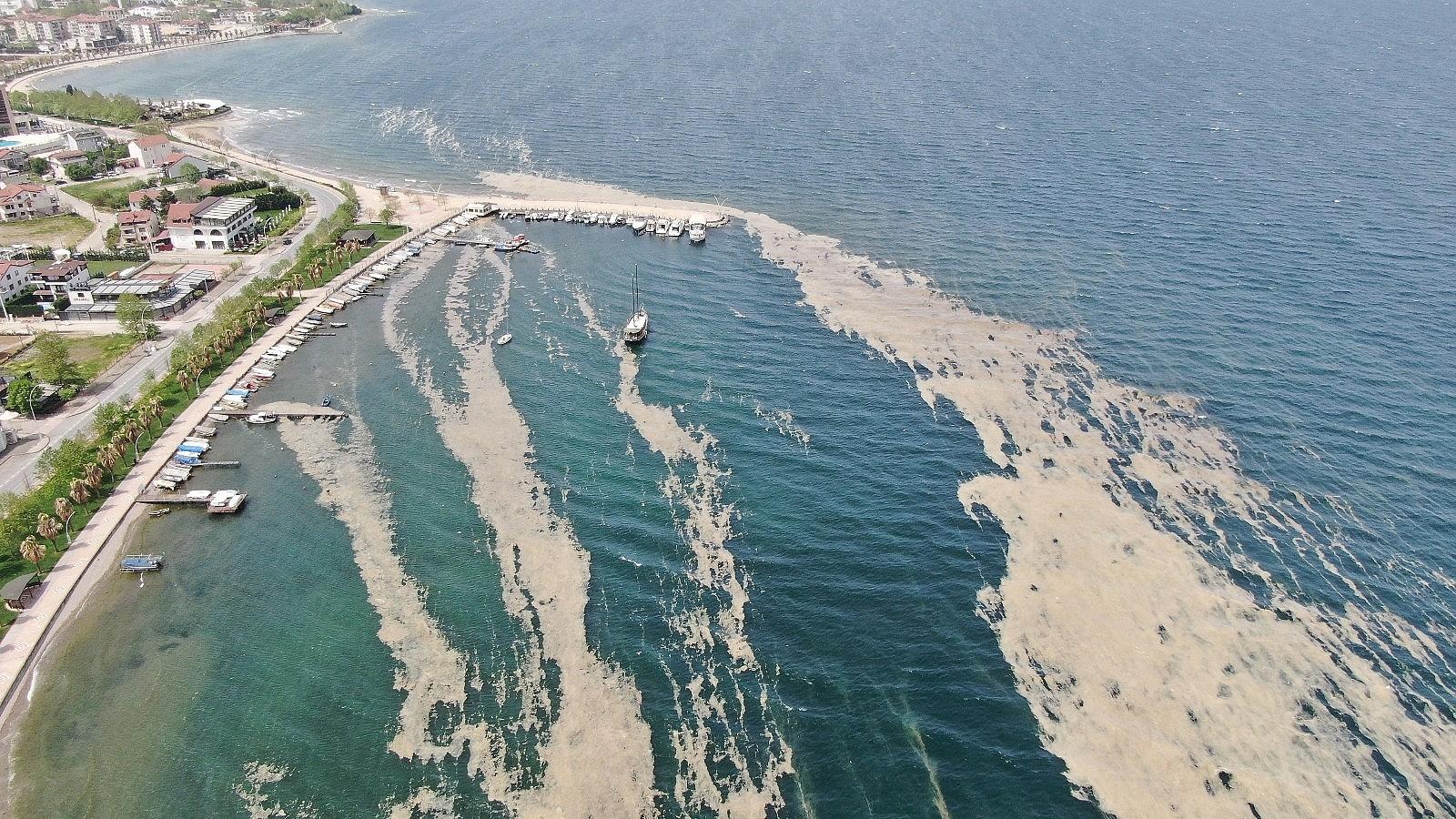 2021/05/izmit-korfezinde-deniz-salyasi-istilasi-artarak-devam-ediyor-20210503AW31-1.jpg