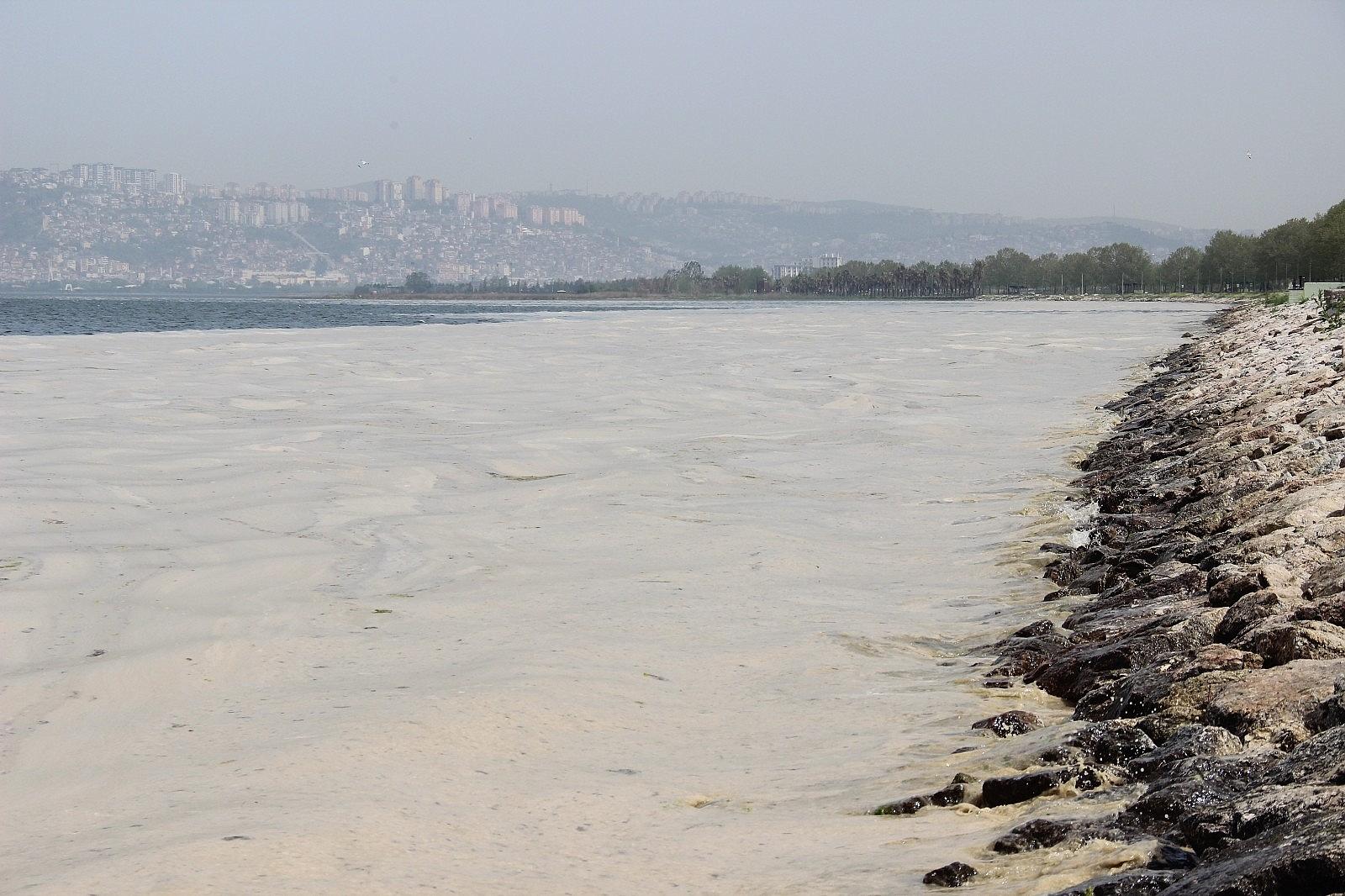 2021/05/izmit-korfezinde-deniz-salyasi-istilasi-artarak-devam-ediyor-20210503AW31-4.jpg