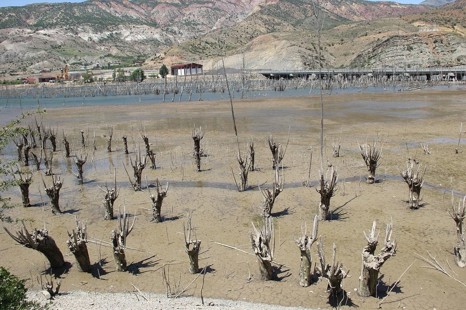 2021/06/suyu-cekilen-barajda-ilginc-goruntuler-olustu-20210601AW33-3.jpg