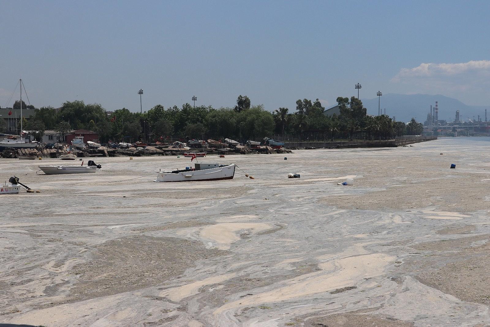 2021/06/vatandas-kureklerle-deniz-salyasi-temizledi-20210606AW33-2.jpg