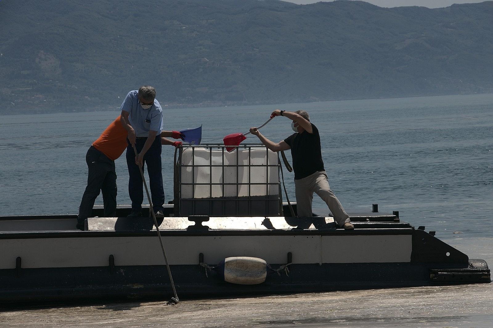 2021/06/vatandas-kureklerle-deniz-salyasi-temizledi-20210606AW33-5.jpg
