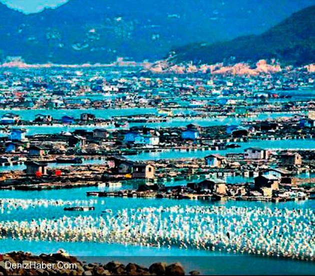 7 Bin Balıkçı Yüzen Evlerde Yaşıyor