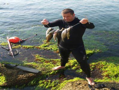 Gelibolu'da 'Zıpkınla Balık Avlama' Yarışması Düzenlendi