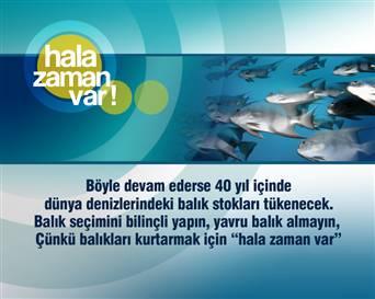 NTV Yavru Balıklara Sahip Çıkıyor