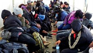 Çeşme'de çoğunluğu Afrikalı 46 kaçak göçmen yakalandı