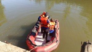 Irmağa giren yunus, ekiplerin çalışması ile denize ulaştırıldı