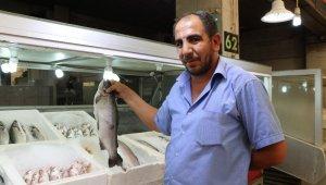 Balıkçı esnafı sezonun açılmasını bekliyor
