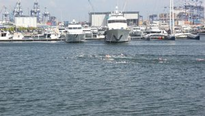 """Beylikdüzü'nde """"20'nci Avrupa Gençler Paletli Yüzme Avrupa Şampiyonası"""" gerçekleştirildi"""