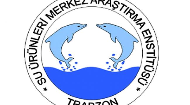 Özbekistan'la, balıkçılık alanında işbirliği
