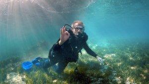 Antalya Valisi, su altında deniz çayırının korunmasına dikkat çekti