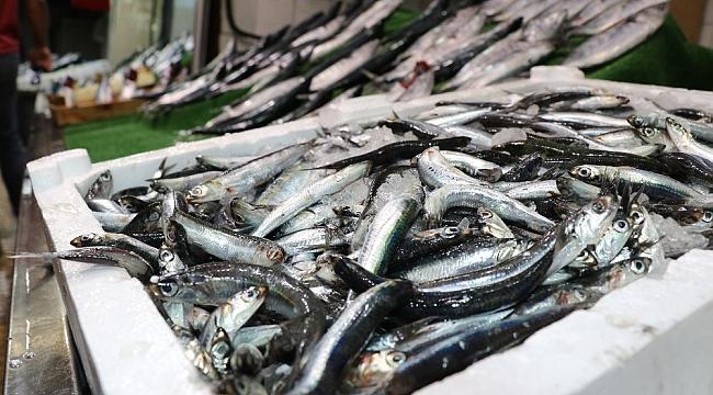 Balıkçılar denizden umutlu