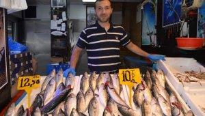 Fırtına nedeniyle balıkçılar deniz açılamayınca palamut fiyatını ikiye katladı