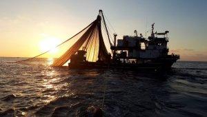 Tekirdağlı balıkçılar Karadeniz'de tonlarca palamut yakaladı