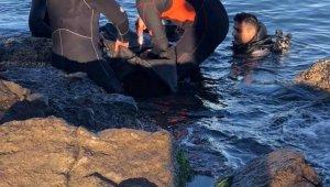 Giresun'da denize düşen gencin cesedine ulaşıldı