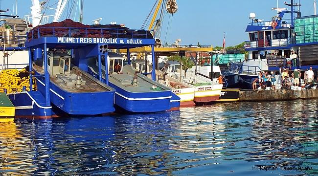 Didim'de Balıkçılar Zor Durumda
