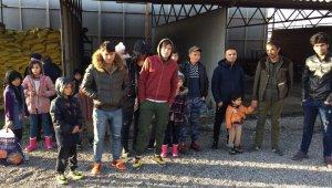 24 kaçak göçmen ve 7 organizatör jandarmadan kaçamadı