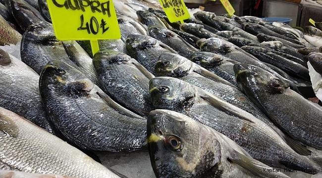 Balık alış fiyatları arttı, satışlar aynı