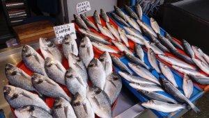 Balık tezgahları boş kaldı