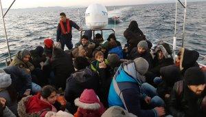 Didim'de 45 düzensiz göçmen yakalandı
