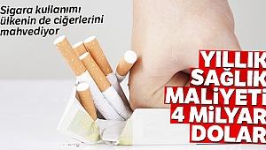 Hüseyin Demir: 'Sigara kullanımı ekonomik açıdan ülkenin ciğerlerini mahvediyor'