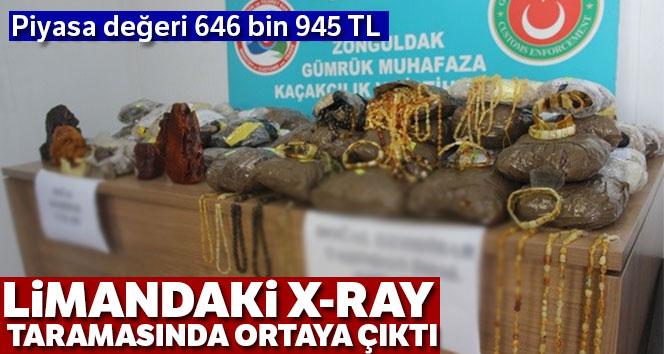 Tır dorsesinde 646 bin 945 TL'lik kehribar taşı ele geçirildi